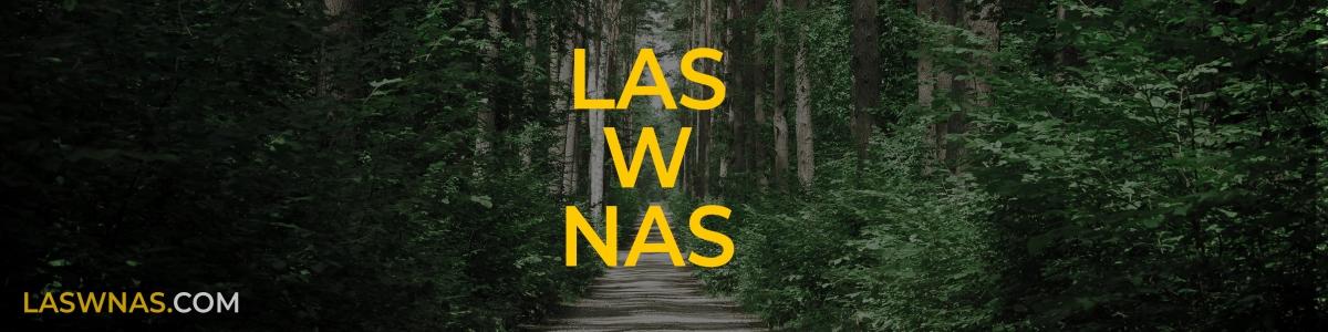 las wnas laswnas.com baner banner magda bębenek piotr horzela