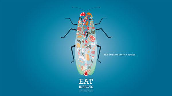 Aaron Smith 3 magda bębenek ochrona środowiska zrównoważona konsumpcja ekologia zaangażowana sztuka człowiek znatury jadalne owady