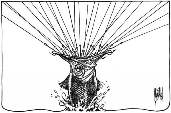 Bruce Mackinnon magda bębenek ochrona środowiska zrównoważona konsumpcja ekologia zaangażowana sztuka przeławianie ryba ocean