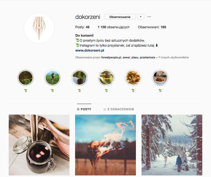 do korzeni dokorzeni.pl inspirujące profile nainstagramie las wnas magda bębenek inspiracja