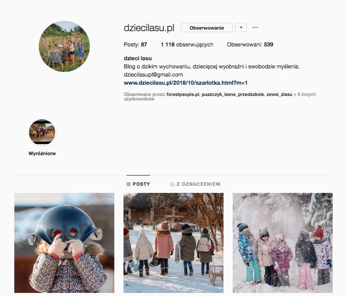 inspirujące profile nainstagramie las wnas magda bębenek dziecilasu.pl dzieci lasu
