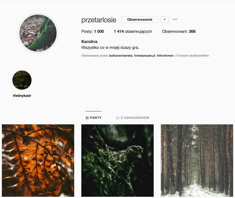 inspirujące profile nainstagramie las wnas magda bębenek puszcza knyszyńska przetarlosie