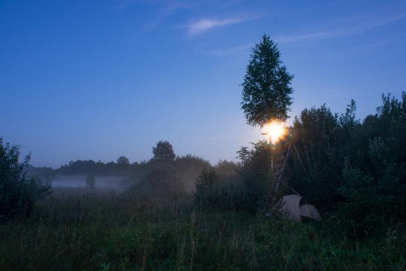 dzikie dzieci magda bębenek rok bliżej natury las wnas wschód słońca podnamiotem