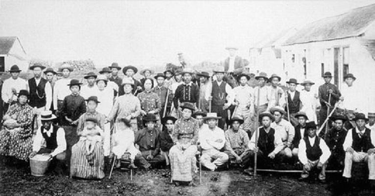 Japońscy imigranci naHawajach, XIX wiek