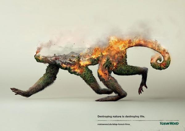 Robin Wood magda bębenek ochrona środowiska małpa lasy równikowe zrównoważona konsumpcja ekologia zaangażowana sztuka