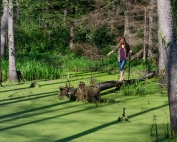 kąpiele leśne magda bębenek amos clifford puszcza knyszyńska shinrin yoku zalewiska bobrowe