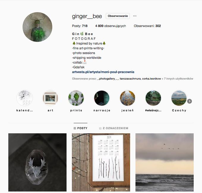 ginger bee inspirujące profile nainstagramie las wnas magda bębenek inspiracja