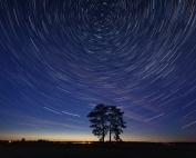 magda bębenek koronawirus nacja Cree rdzenna mądrość